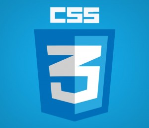 css3 is the future of website design